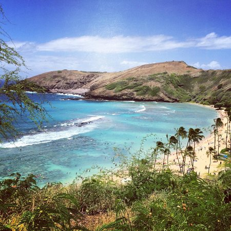 Hanauma Bay Nature Preserve : View from the top overlooking the bay