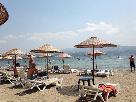 Çanakkale, Türkiye: Piaj manzarası girişi kucuk taşlık olsada kafa dinlenecek guzel bir plaj