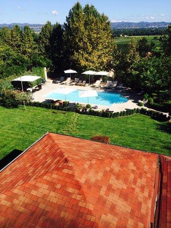 Hotel Al Grappolo d'Oro: Vista sulla piscina e sui vigneti