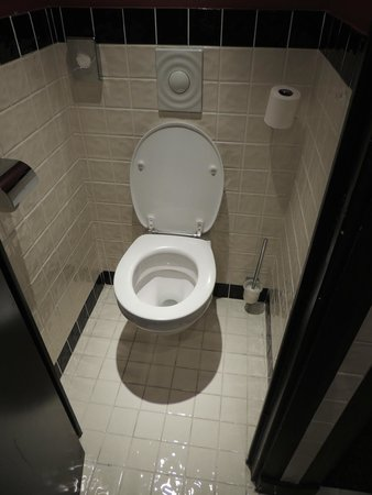 New Hotel Bompard: etroitesse des toilettes une fois la porte fermé