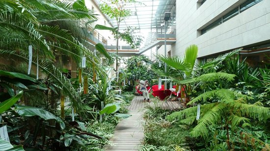 Bibliotheque Francophone Multimedia : jardin d'hiver