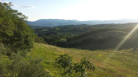 B&B Le Due Volpi : Panorama