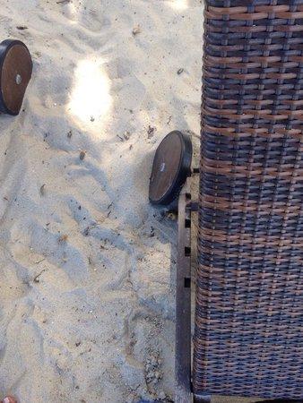 Buri Rasa Village Samui: Sdraio scomode e rotte