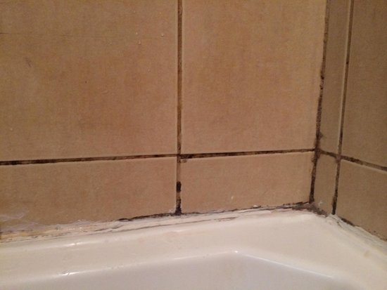 Anchorage Beach Resort : Mould and dirty in the bathroom