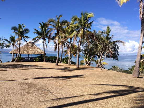Anchorage Beach Resort : Pretty views - dead lawn