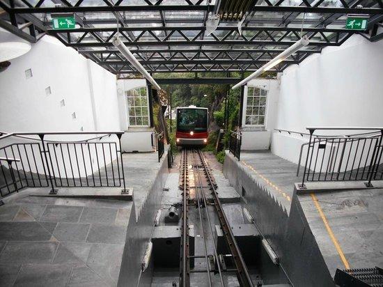 Mount Floyen and the Funicular (Floibanen): Upper Station - July 2010