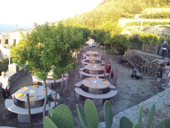 Hotel Villa Janto : CENA DI FERRAGOSTO AI VIGNETI CRATECA