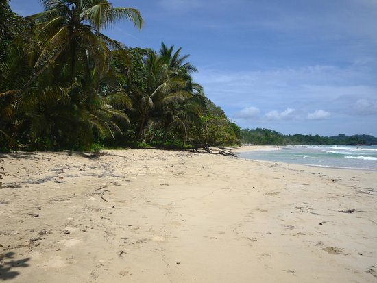 Unexpected Moments of Magic Panama: in Bocas