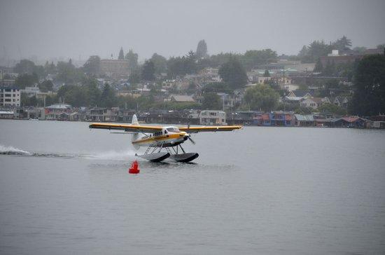 Argosy Cruises - Seattle Waterfront : Hydravion amerrissant sur le lac Union