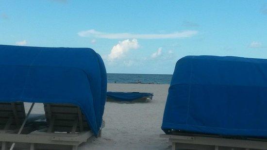 Guy Harvey Outpost, a TradeWinds Beach Resort: Cabana