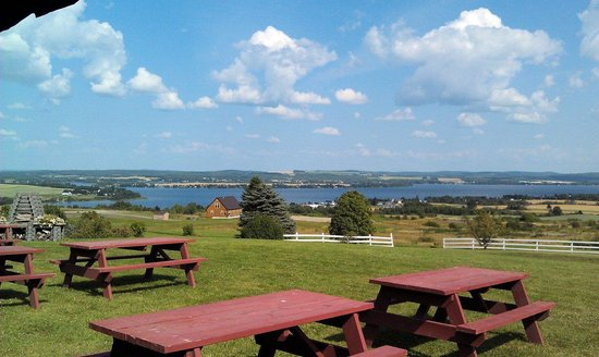 Lakeview Restaurant : Postcard Picture Perfect