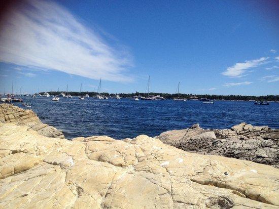 Îles de Lérins : Magnifique endroit !!!