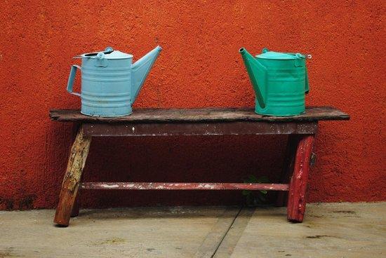 Casa Tía Micha: IN teh garden