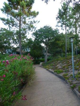 Residence Blue Marine : Le joli jardin