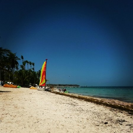 IFA Villas Bavaro Resort & Spa: beach