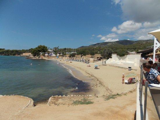 Club MAC Alcudia: marineland beach