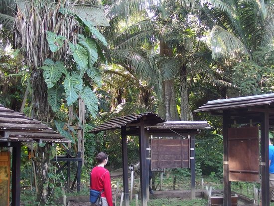 Entrance of the Inkaterra Ecological Reserve