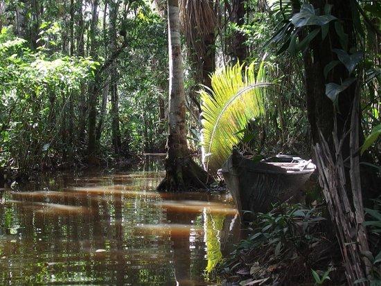 Inkaterra Ecological Reserve: Lago Sandoval