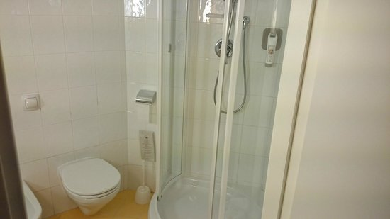 Ibis Firenze Nord Aeroporto: Bathroom