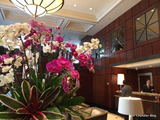 Park Hyatt Toronto: El lobby