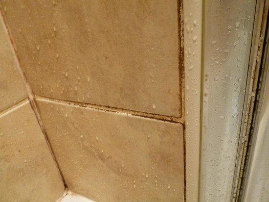 Ardvasar Hotel: Mould shower wall