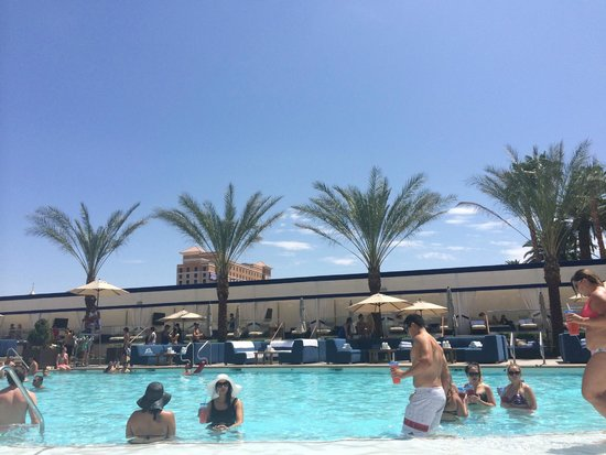 MGM Grand Hotel and Casino : Wet republic pool. Separate pool area to all other pools.