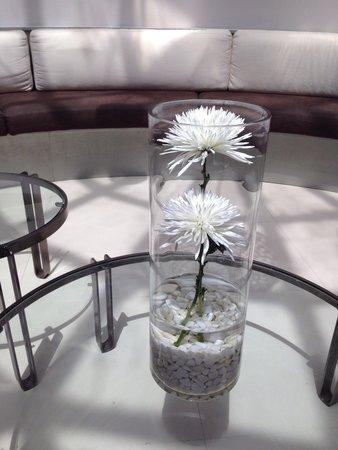 SENTIDO H10 White Suites: Detalle flor
