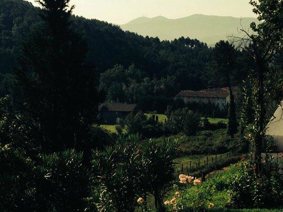 Residence Alfoionco: uitzicht vanaf het terras