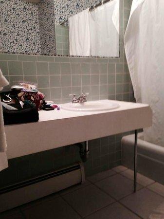 Storybook Inn & Suites : 1950's style bathroom