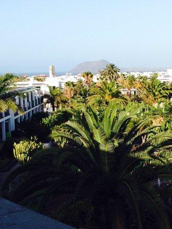 Las Marismas de Corralejo: View