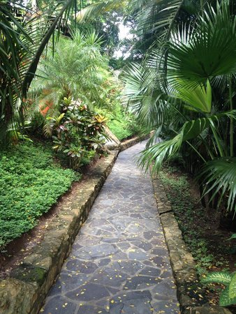 Hotel Vista de Olas : Pathway to the villa