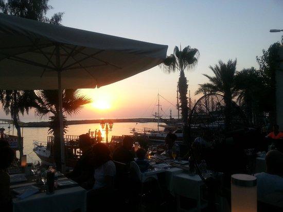 Kentia Apartments: View from Lemon restaurant