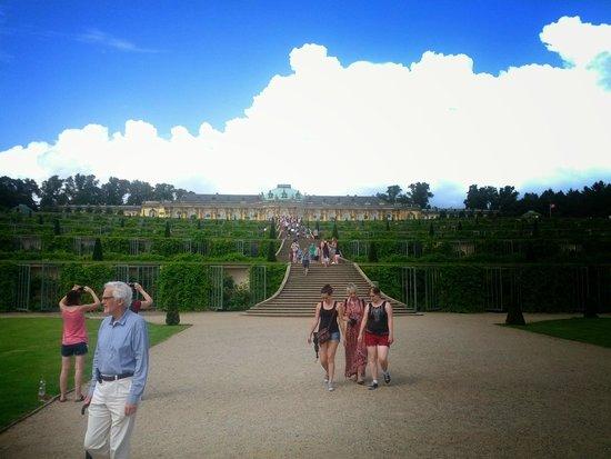 Sanssouci Palace : dal parco