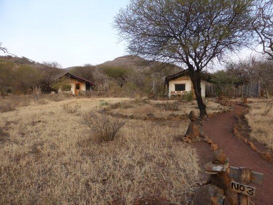 Isoitok Camp - Manyara : Permanent tents