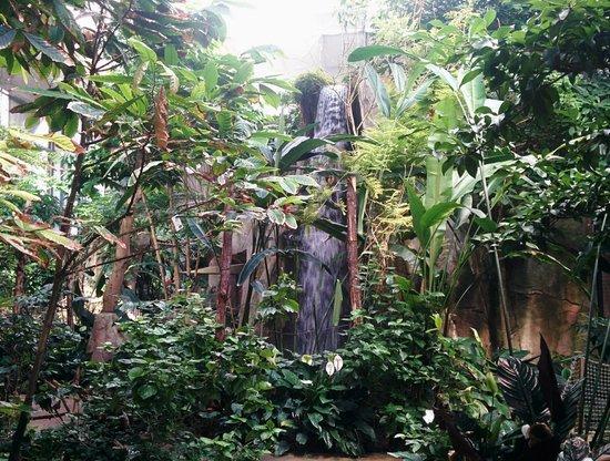 Parc Zoologique Henri de Lunaret : la serre