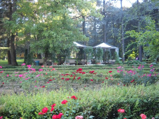 Hotel delle Rose Terme & Wellness Spa: Parco
