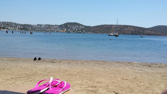 Bitez Beach : mare