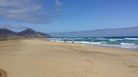 Barcelo Jandia Playa: playa barlovento