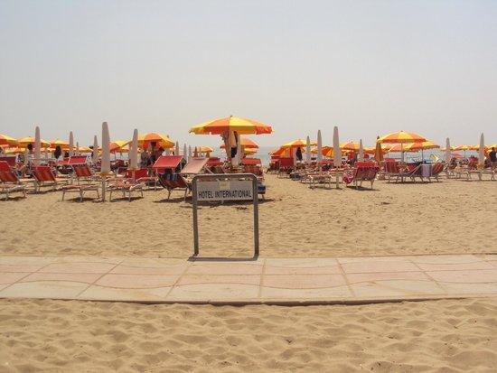 Hotel International: International Hotel - spiaggia