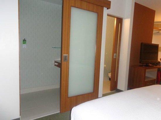 SpringHill Suites Atlanta Airport Gateway: translucent bathroom door