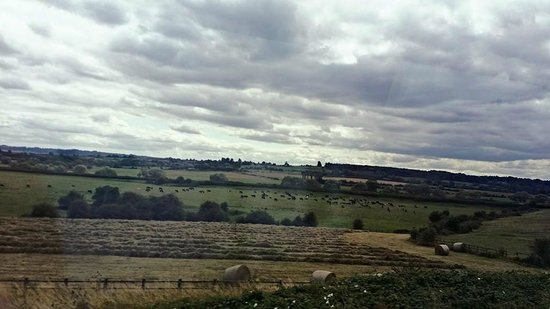Evan Evans Tours: the countryside view on the bus!