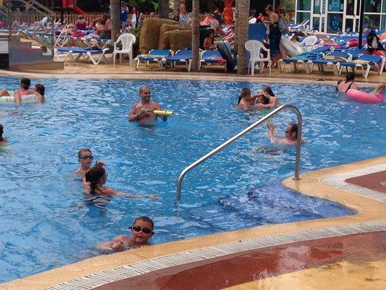 Hotel Flamingo Oasis : Lovely pool
