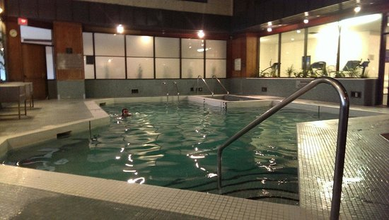Sandman Hotel Calgary City Centre: Pool & spa