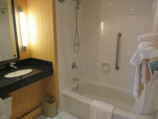 Novotel Montreal Center : Shower/bath