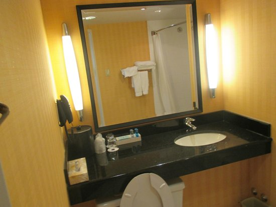 Novotel Montreal Center : Bathroom