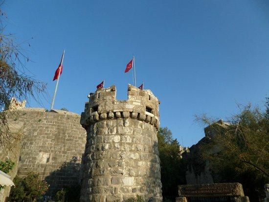 Castle of St. Peter: ingresso