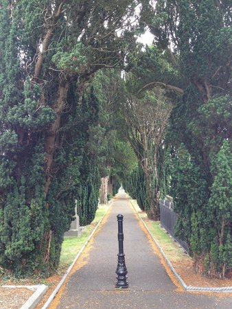 Glasnevin Cemetery Museum: Beautiful grounds!