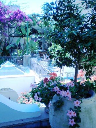 Hotel Gatto Bianco: giardino per la colazione