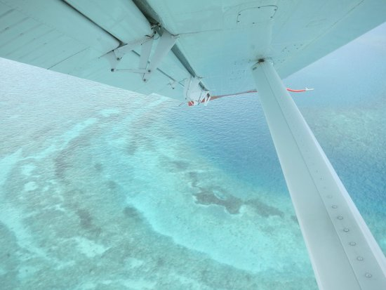 Key West Seaplane Adventures: Aerial views on way to Dry Tortugas