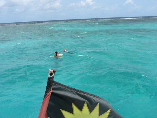 Adventure Caribbean Yacht Charter: snorkeling